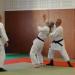 2010-Stage-interclub-aikido 017