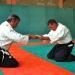 Stage-Aikido-Marseille-2011-05-025