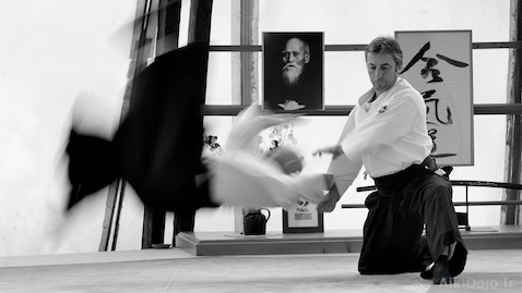Stage Aikido D. Toutain