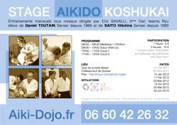 Stage aikido - koshukai