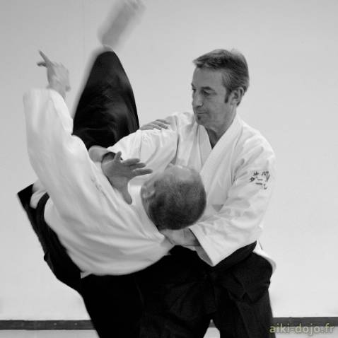 2011-01-stage-aikido-dt