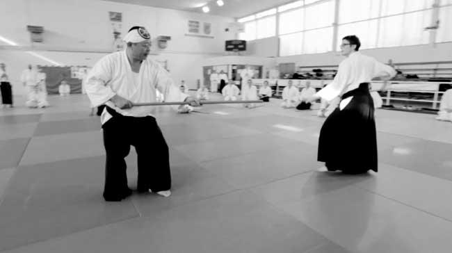 2012-saito-aikido-seminar-rennes