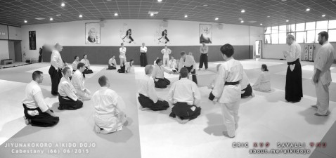 Stage Aikido - Cabestany / Perpignan avec Daniel Toutain. Organisé par Christian Haullard