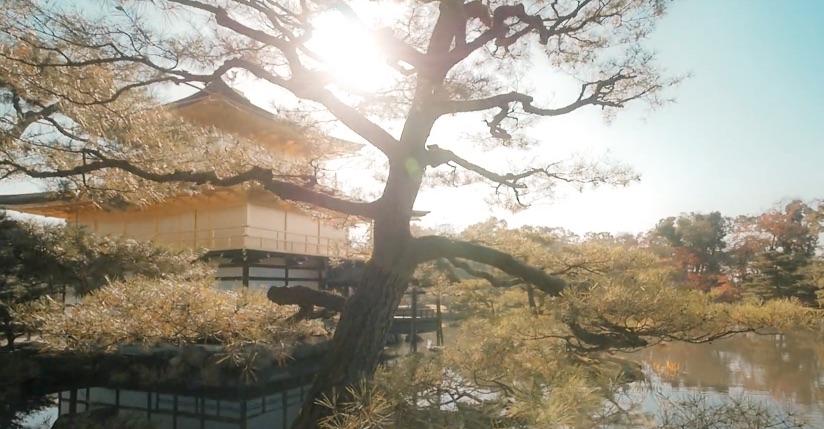 Vidéo de Kyoto à couper le souffle